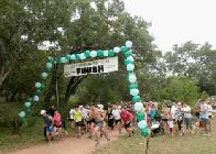 Start of Wilderness Run 2014 (click to enlarge)