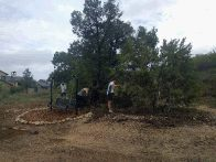 FOP volunteers trim around George Ferrie's memorial swing in Canyonlands (click to enlarge)