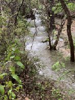 Yaupon Creek above Rainbow Bridge (click to enlarge)
