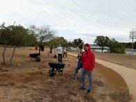 FOP City Park volunteers prepare the Wildflower Meadow (click to enlarge)