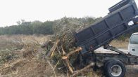 Truck dumping cut vegetation at Public Works (click to enlarge)